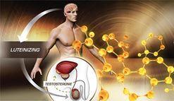 Dấu hiệu cảnh báo Testosterone thấp ở quý ông