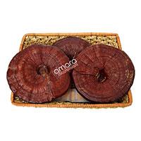 Nấm linh chi núi đỏ Hàn Quốc thượng hạng khay 1kg (Nấm linh chi núi đá)