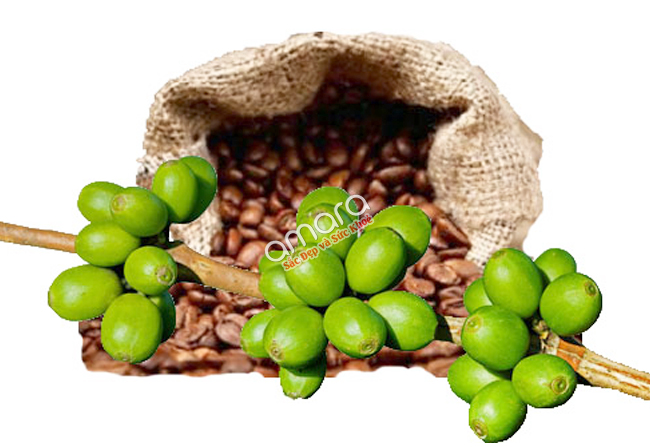 vien-thuoc-giam-can-green-coffee-bean-extract-2