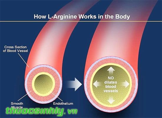Triple X - Tăng cường testosterone, gia tăng khoái cảm tình dục vượt trội L-arginine-triple-x