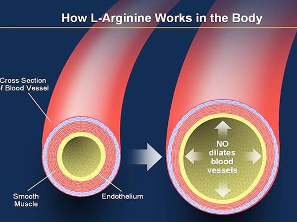 l-arginine-max-stamina