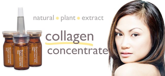 serum-collagen-b