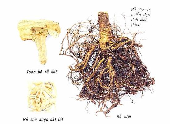 Herbal VIVA Super, thảo dược tăng cường sinh lý nam nữ cao cấp USA Siberia-nhan-sam